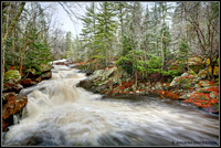 High Falls Area - Algonquin